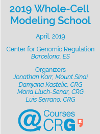 2019 Whole-Cell Modeling School