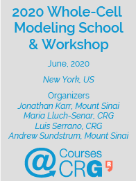 2020 Whole-Cell Modeling School & Workshop